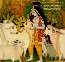 Krishna as wish fulfilling cow